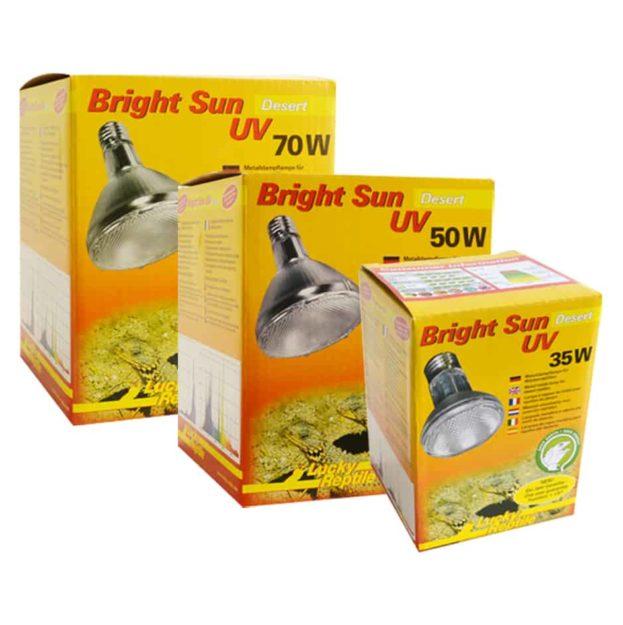 63600-63602 Bright Sun Desert