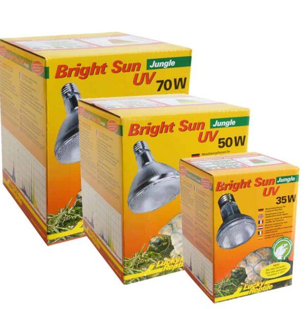 63610 - 63612 Bright Sun Jungle